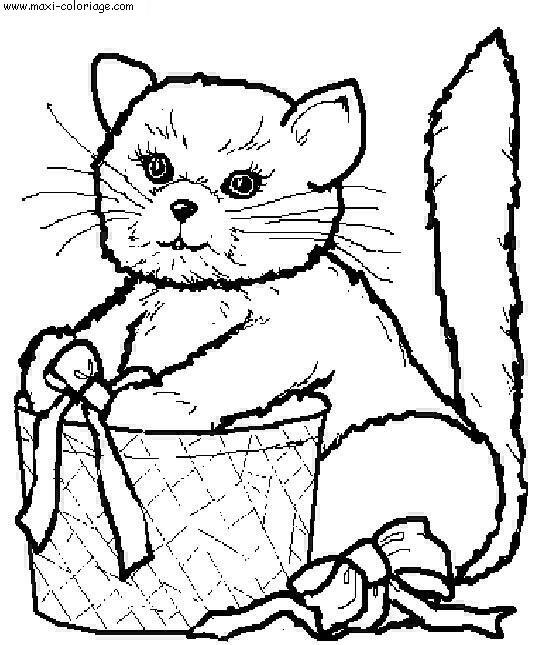 """L'image """"http://www.maxi-coloriage.com/coloriage-dessin/animaux/chats_025.jpg"""" ne peut être affichée car elle contient des erreurs."""