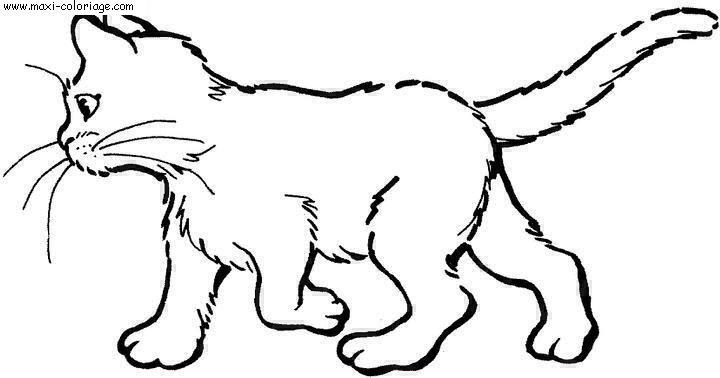 """L'image """"http://www.maxi-coloriage.com/coloriage-dessin/animaux/chats_035.jpg"""" ne peut être affichée car elle contient des erreurs."""
