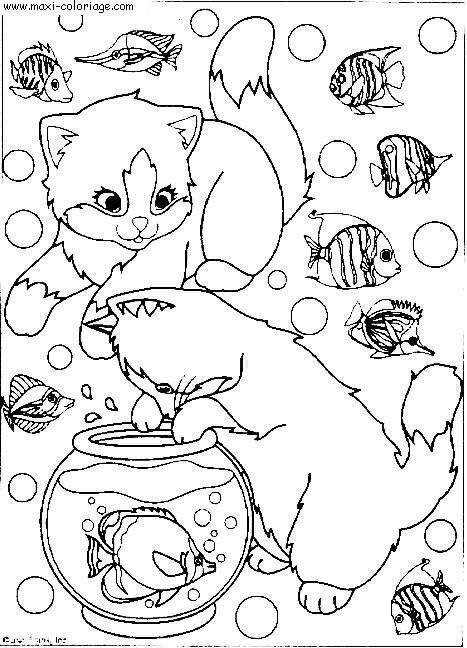 """L'image """"http://www.maxi-coloriage.com/coloriage-dessin/animaux/chats_043.jpg"""" ne peut être affichée car elle contient des erreurs."""