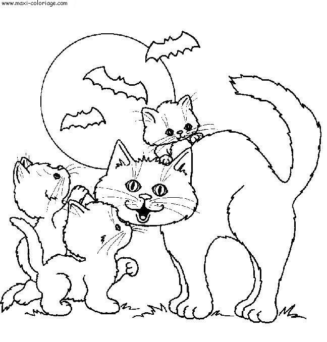 """L'image """"http://www.maxi-coloriage.com/coloriage-dessin/animaux/chats_045.jpg"""" ne peut être affichée car elle contient des erreurs."""