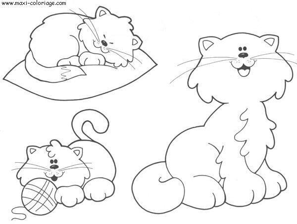 coloriage Chats