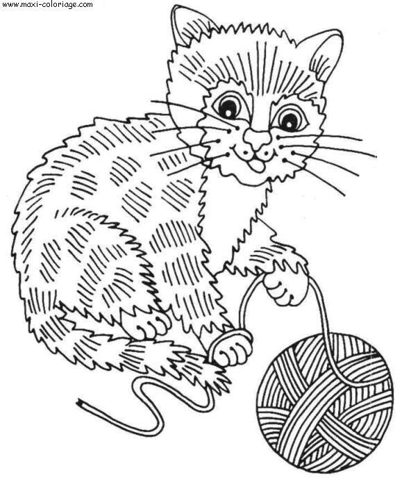 """L'image """"http://www.maxi-coloriage.com/coloriage-dessin/animaux/chats_081.jpg"""" ne peut être affichée car elle contient des erreurs."""