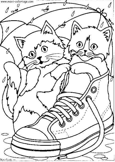 """L'image """"http://www.maxi-coloriage.com/coloriage-dessin/animaux/chats_084.jpg"""" ne peut être affichée car elle contient des erreurs."""
