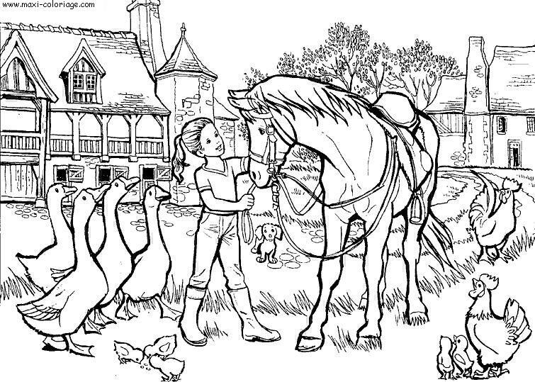 Dessin a colorier de chevaux - Chevaux dessins ...