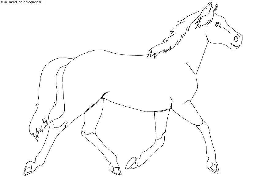 0 chevaux httpwwwmaxi coloriagecomcoloriage dessinanimauxchevaux_078jpg - Dessins De Chevaux