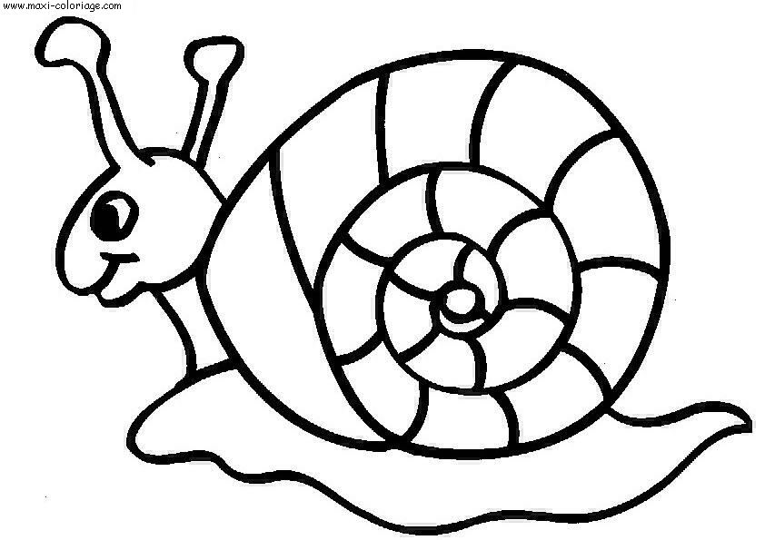 coloriage Escargots