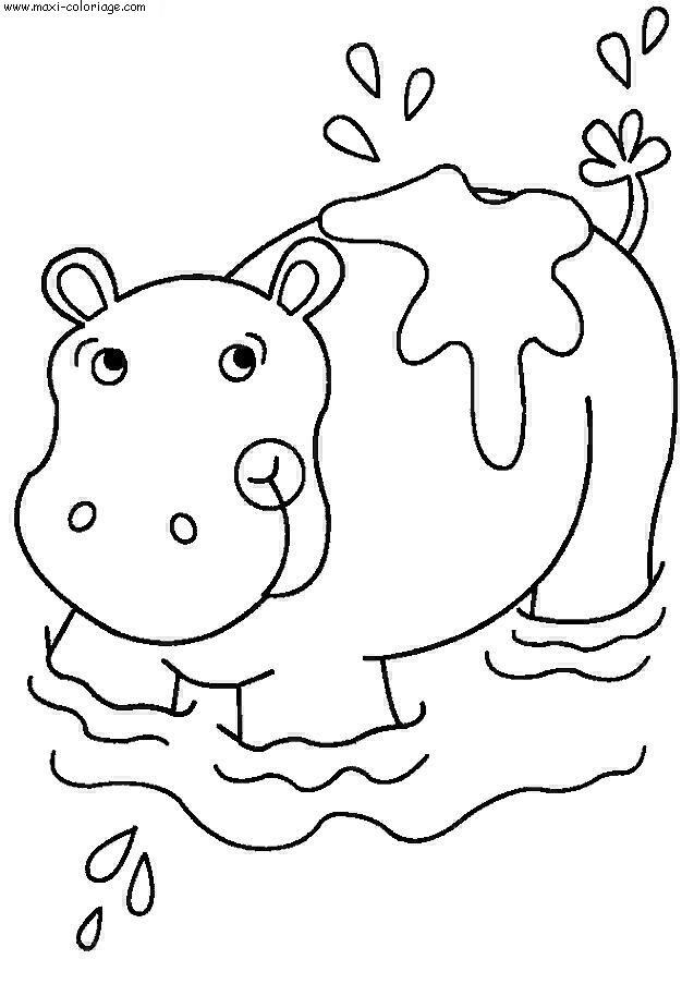 Coloriage hippopotames dessin hippopotames hippopotames coloriage n 4409 - Maxi coloriage ...