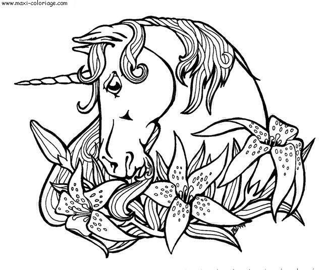Coloriage licornes dessin licornes licornes coloriage n 4453 - Maxi coloriage ...