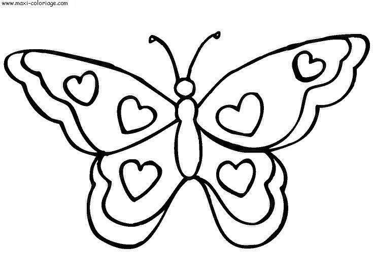 Coloriage papillons - Dessins papillons ...