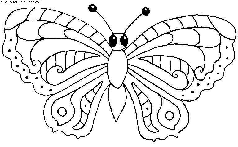 Coloriage Papillons Dessin Papillons Papillons Coloriage N4560