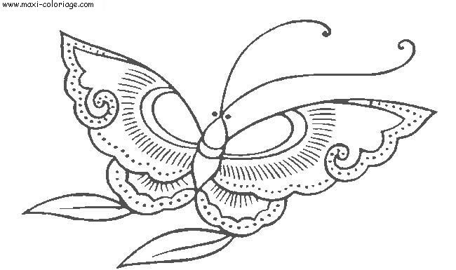 coloriage Papillons