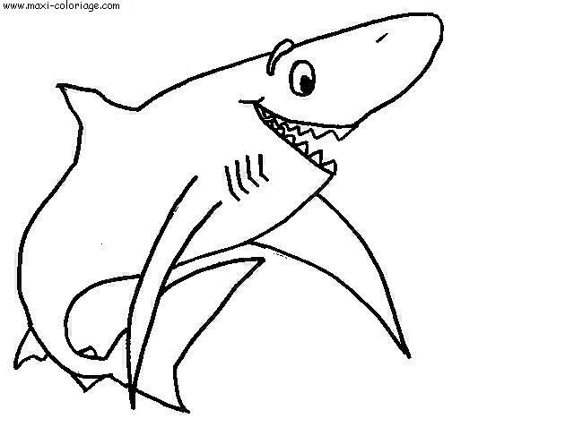Dessinrequin - Requin dessin ...