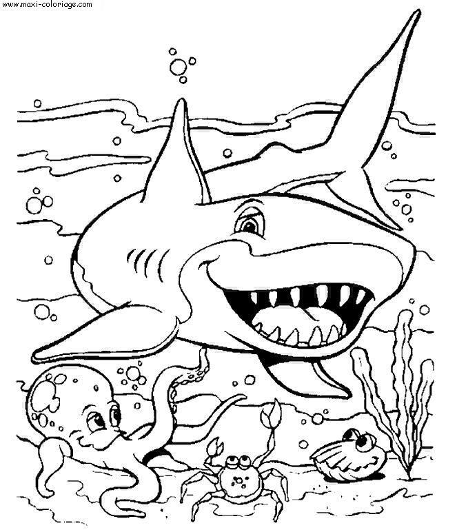 Dessin Requins