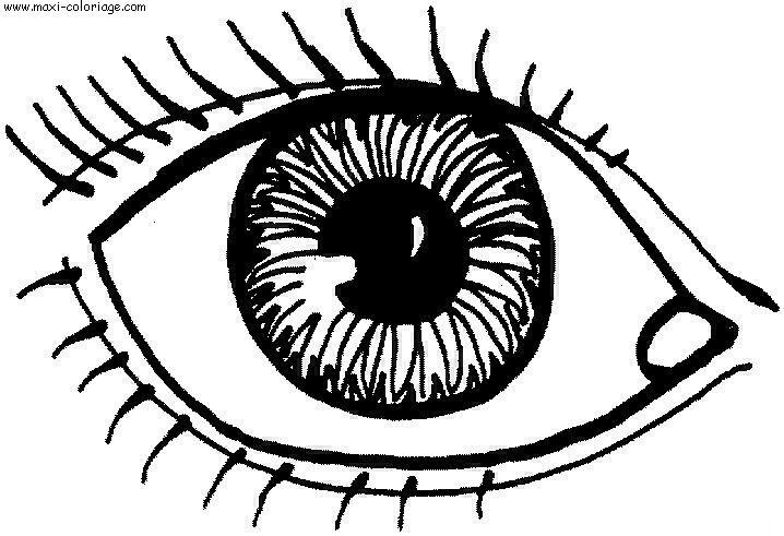 Comment colorier un oeil la r ponse est sur - Oeil a colorier ...